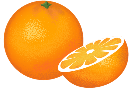 FINE CITRUS TREES ONLINE Orange