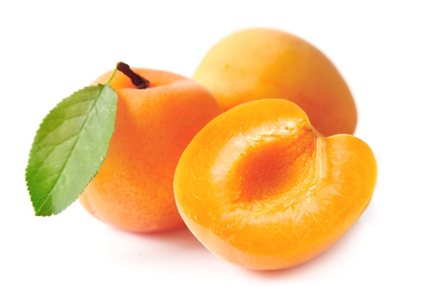 Chinese Apricot Tree (SOLD OUT)