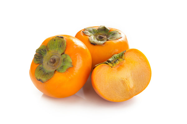 Fuyu/ Jiro Persimmon Tree-(SOLD OUT)