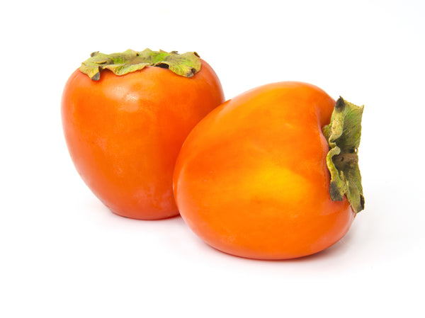 Hachiya Persimmon Tree-(SOLD OUT)