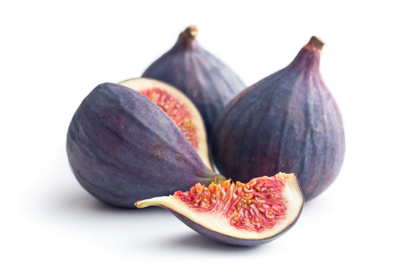 Black Mission Fig Tree (SOLD OUT)