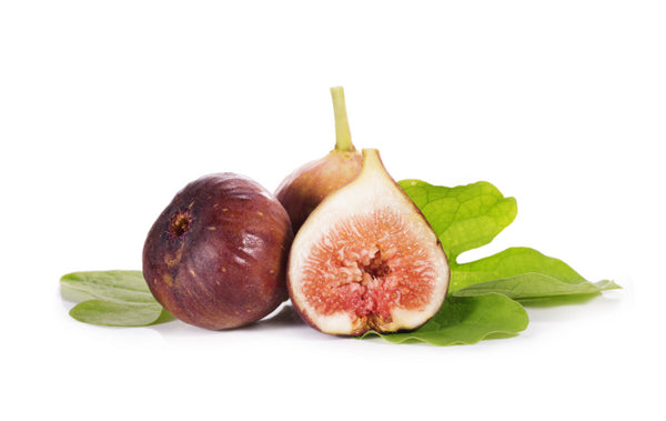 Brown Turkey Fig Tree (SOLD OUT)