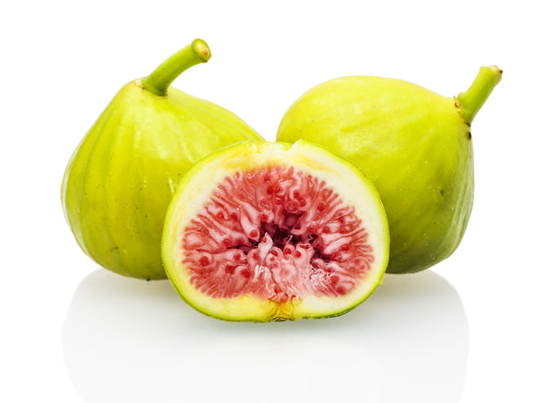 White Genoa Fig (SOLD OUT)