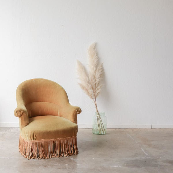 Gold Velvet Crapaud Chair - furniture