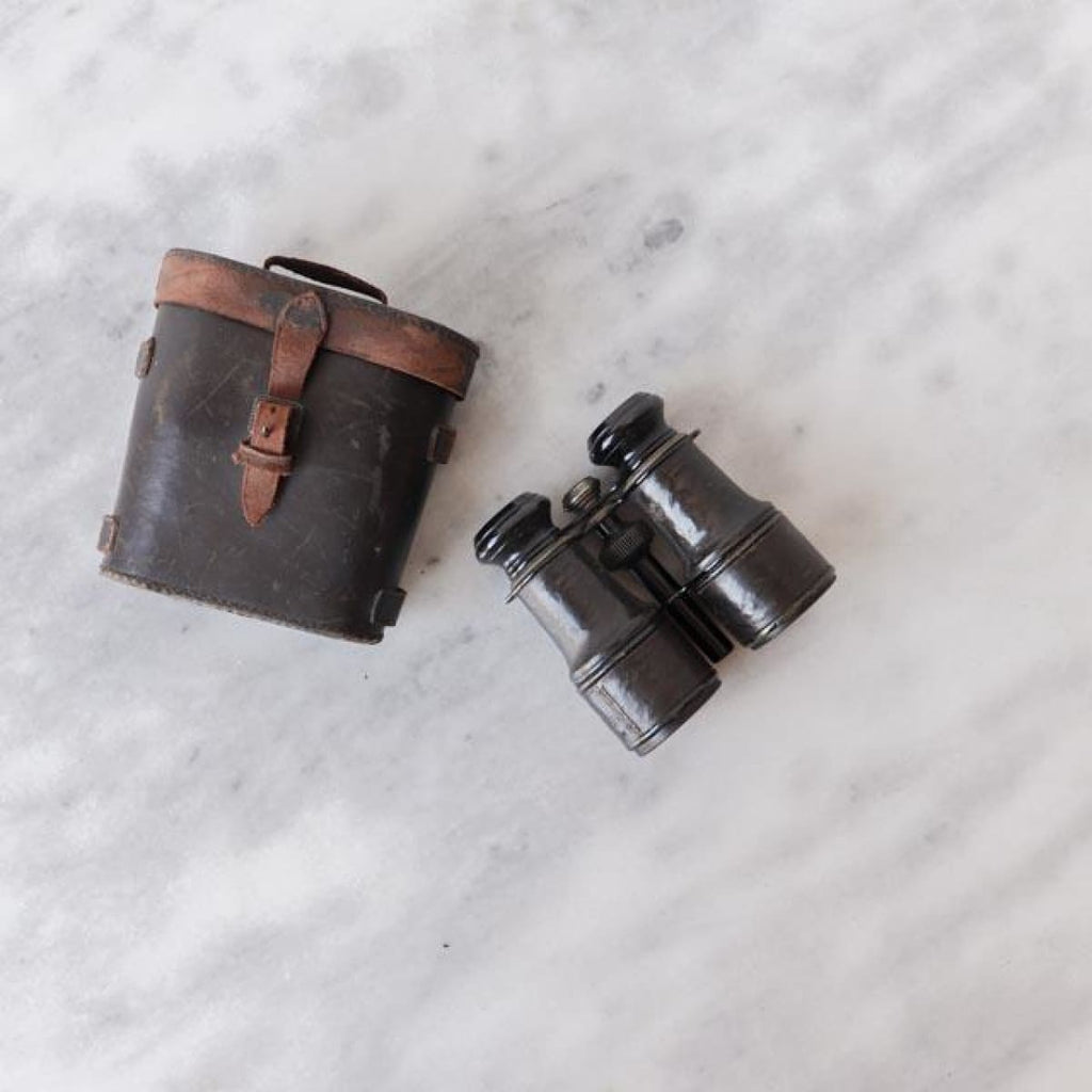 Vintage Binoculars in Leather Case - Decor