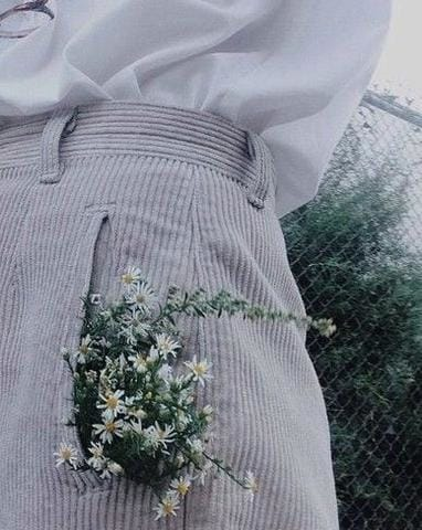 Foraged Flora | Our Flora Inspired Playlist
