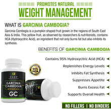 Zoop Garcinia Cambogia With 95% Hydroxycitric Acid. Carb Blocker & Fat Burner, Non-Stimulant & Gluten Free Diet Pills, Appetite Suppressant And Weight Loss Pills For Woman And Men. - GL Health & Wellness