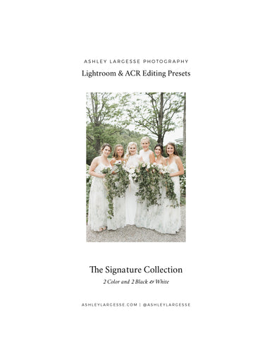 Ashley Largesse Presets - The Signature Collection