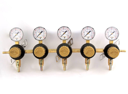 "T1695ST-2N - Secondary Beer Regulator, 5P5P, 5/16"" Barb In/Thru, 5/16"" Barb  Shut-offs, 60lb Gauges"