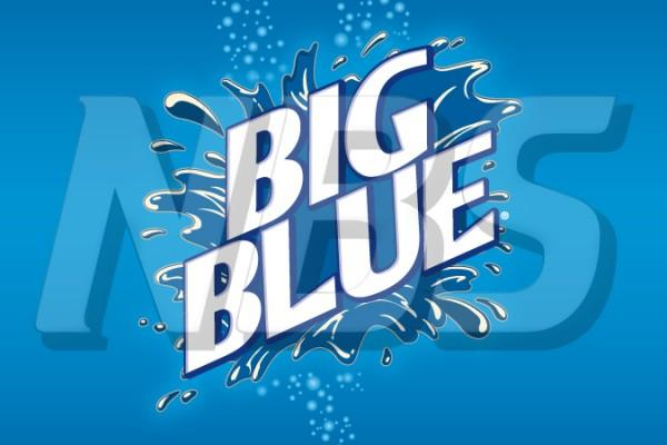 "Big Blue 63 UF-1 Valve Decal, VI11631830 2"" x 1 1/4"""