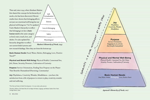 Agrawal's Hierarchy of Needs