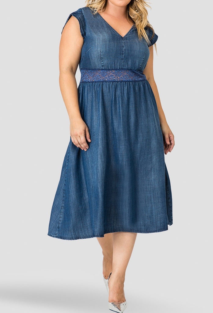 Standards & Practices Rosaleen Denim Dress