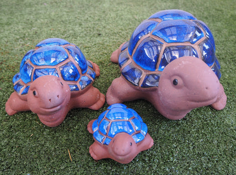 Glazed Turtles