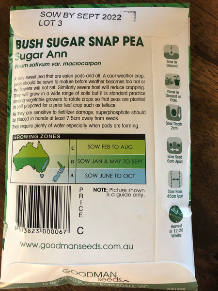 Sugar snap pea - Bush - Sugar Ann