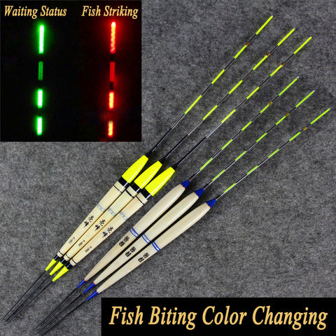2PCS Carp Fishing Night Fishing Electronic Float Luminous Elec Bobbers Drifts Battery Fishing Tackle