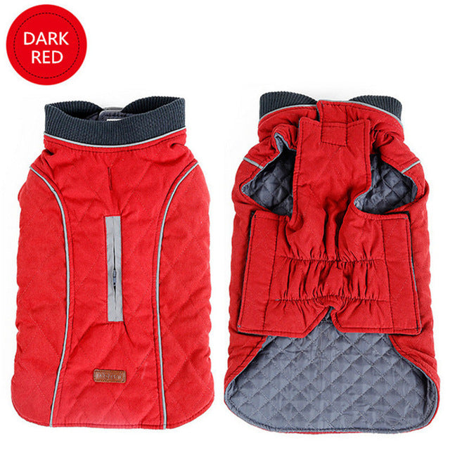 Toasty-Warm Quilted Winter Dog Jacket