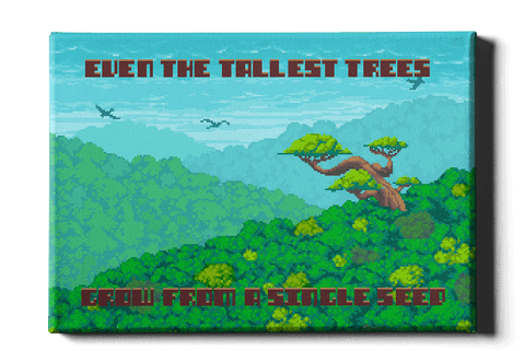 The tallest trees