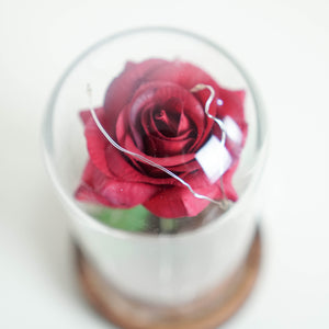 Stunning Rose Glass Dome