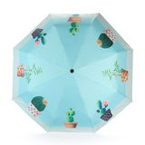 Succulent Designed Umbrella
