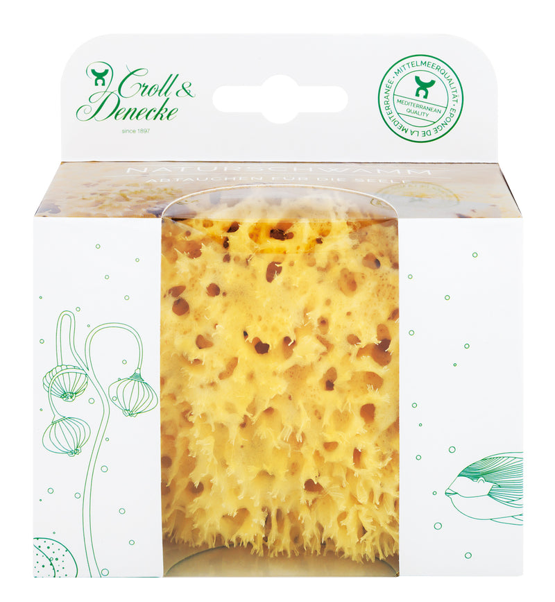 Packaged Natural Sponge
