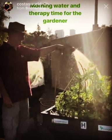 man watering his raised garden bd