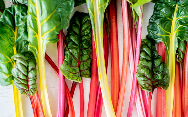 vegepod rainbow chard