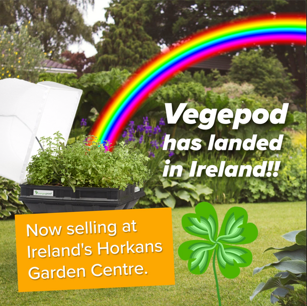 vegepod raised garden bed in ireland