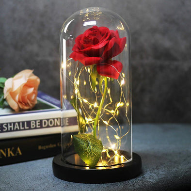 Rose Flower in Glass LED Light - Bestgoodshop