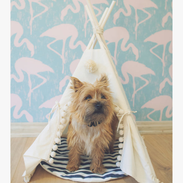Pet Tent Bed Dog Cat - Bestgoodshop
