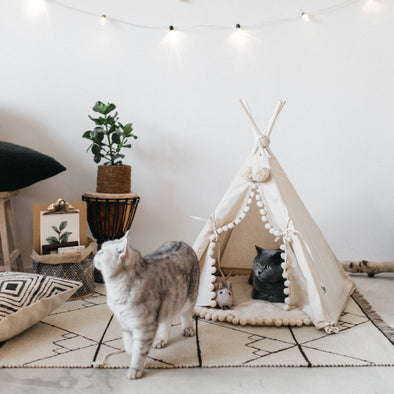Pet Tent Bed Dog Cat