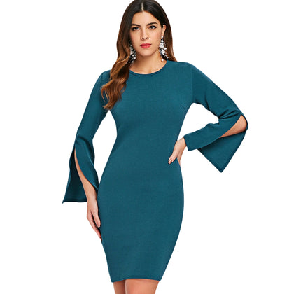 Casual Bell Slleve Fitted Dress