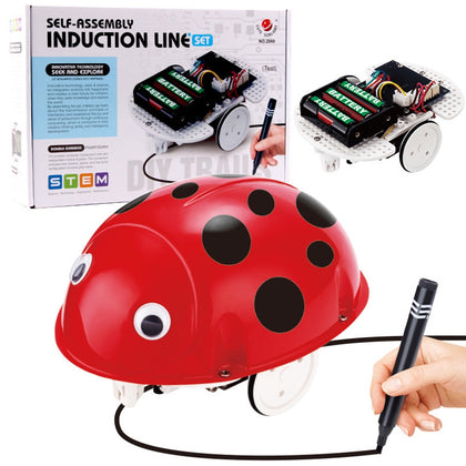 Electric DIY Science and Education Puzzle Self-loading Ladybug Line Induction Simulation Walking Assembly Insect Model Toy