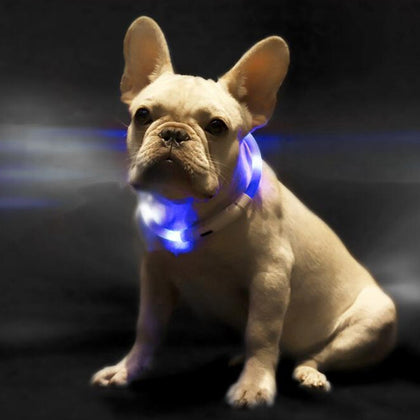 XL81 - 5001 Waterproof Lighting USB Pet Collar from Xiaomi youpin