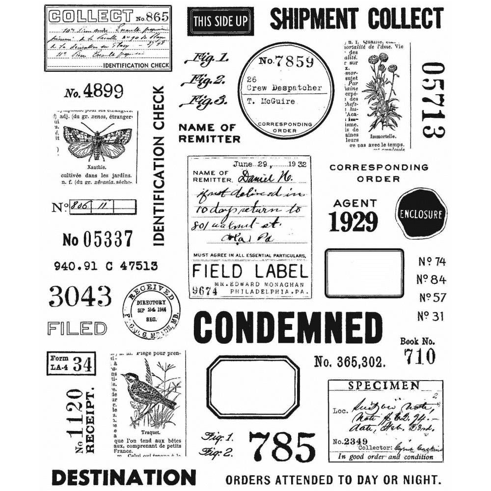 Tim Holtz Cling Stamp Set - Field Notes
