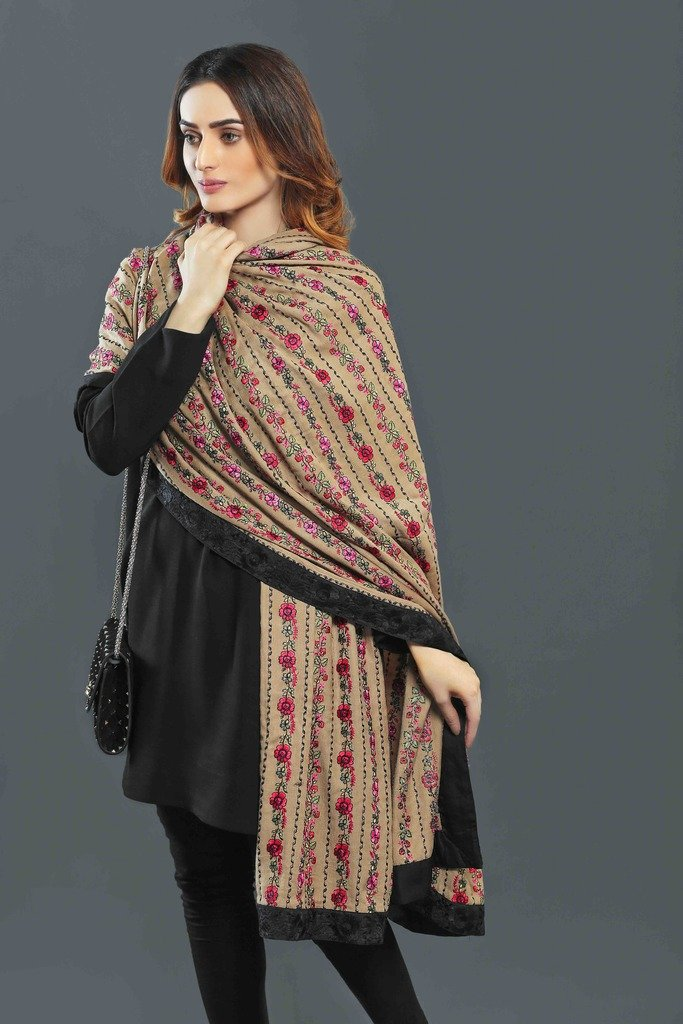 Beige Classic Pashmina Shawl with Black Borders
