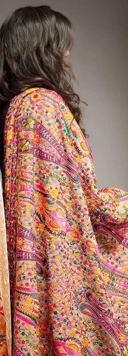 Fully Embroidered Pashmina Shawls with Paisly Pattern