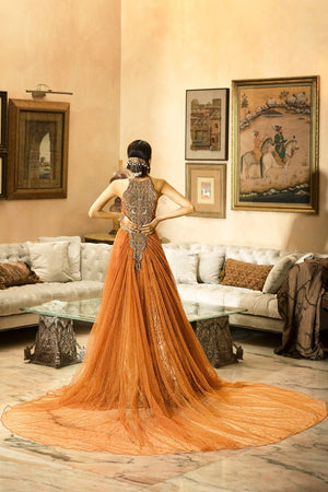 Crystal Cluster Pakistani fancy dresses with prices