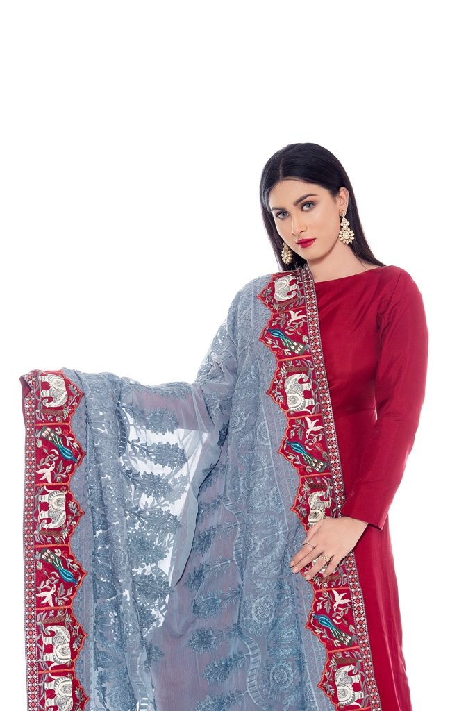 Elephent Embroidered Border on Embroidered Shafoon Dupatta 2020