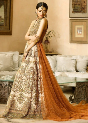 Crystal Cluster Pakistani fancy dresses