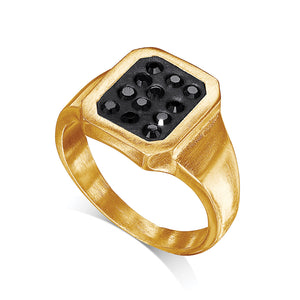 Gold Plated Signet Ring - SEA Smadar Eliasaf