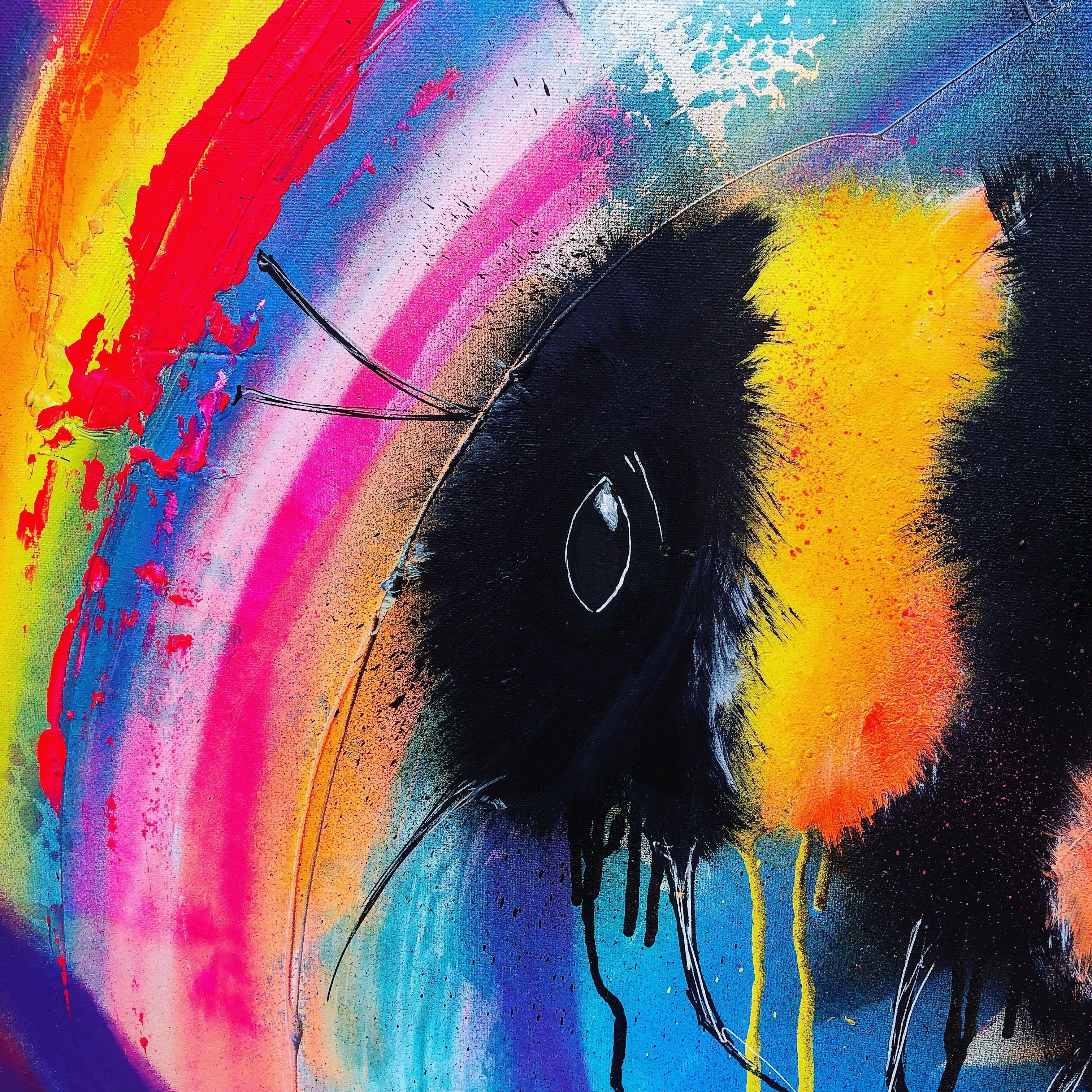 bee art colour bumble sophie long graffiti