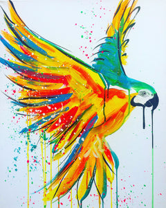 20 minute art challenge macaw sophie long art