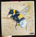 BEE on scaffolding board - gold chain