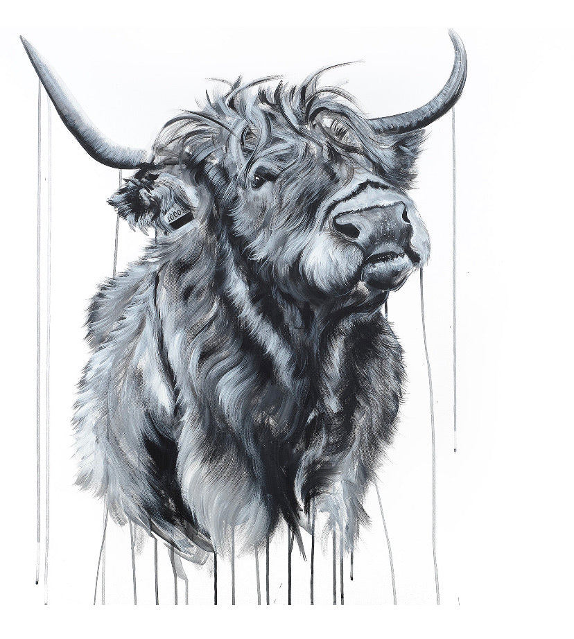 Limited Edition PRINT – HIGHLAND HEFFER