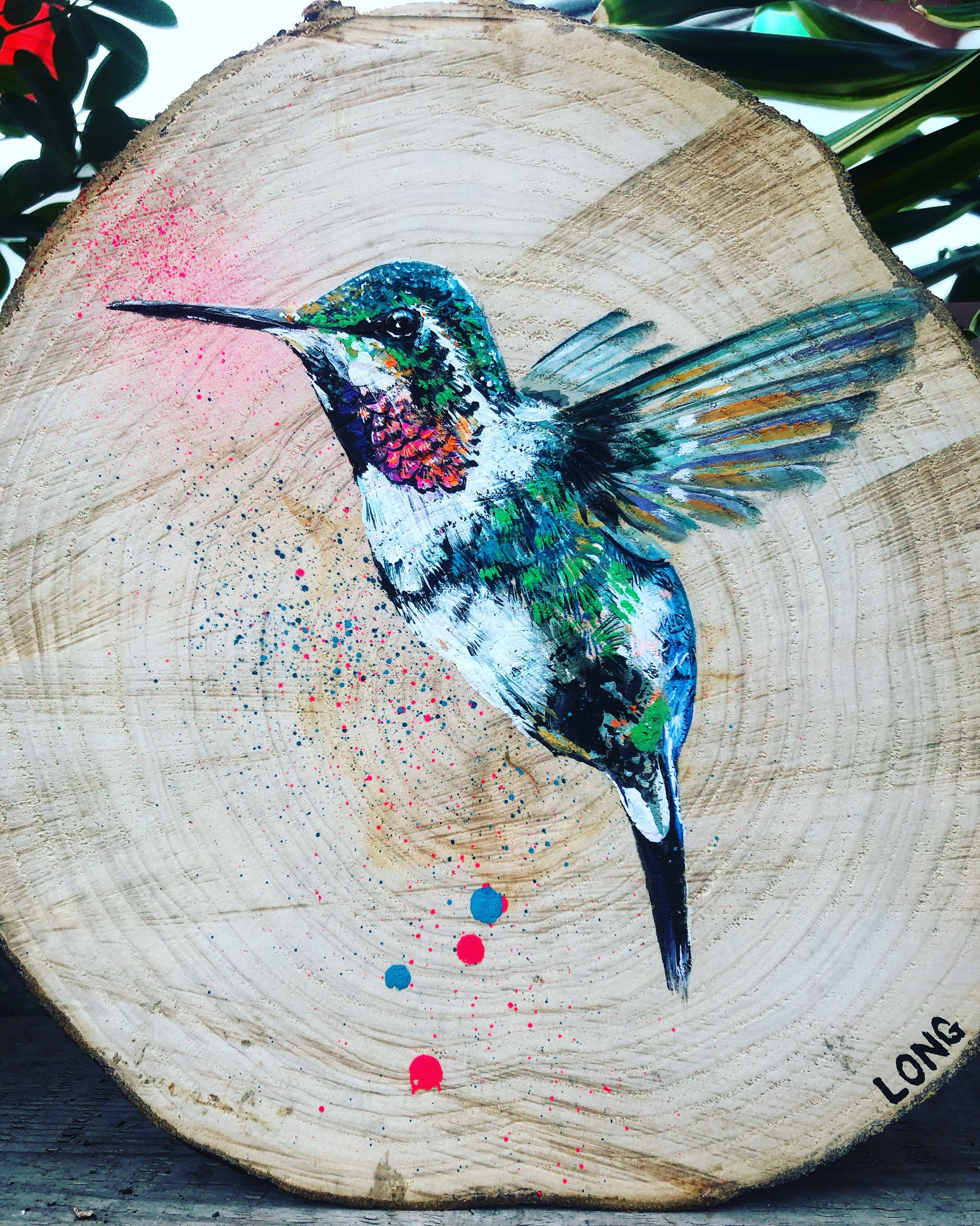 HUMMINGBIRD SLICE