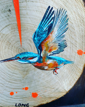KINGFISHER #2 WOODSLICE