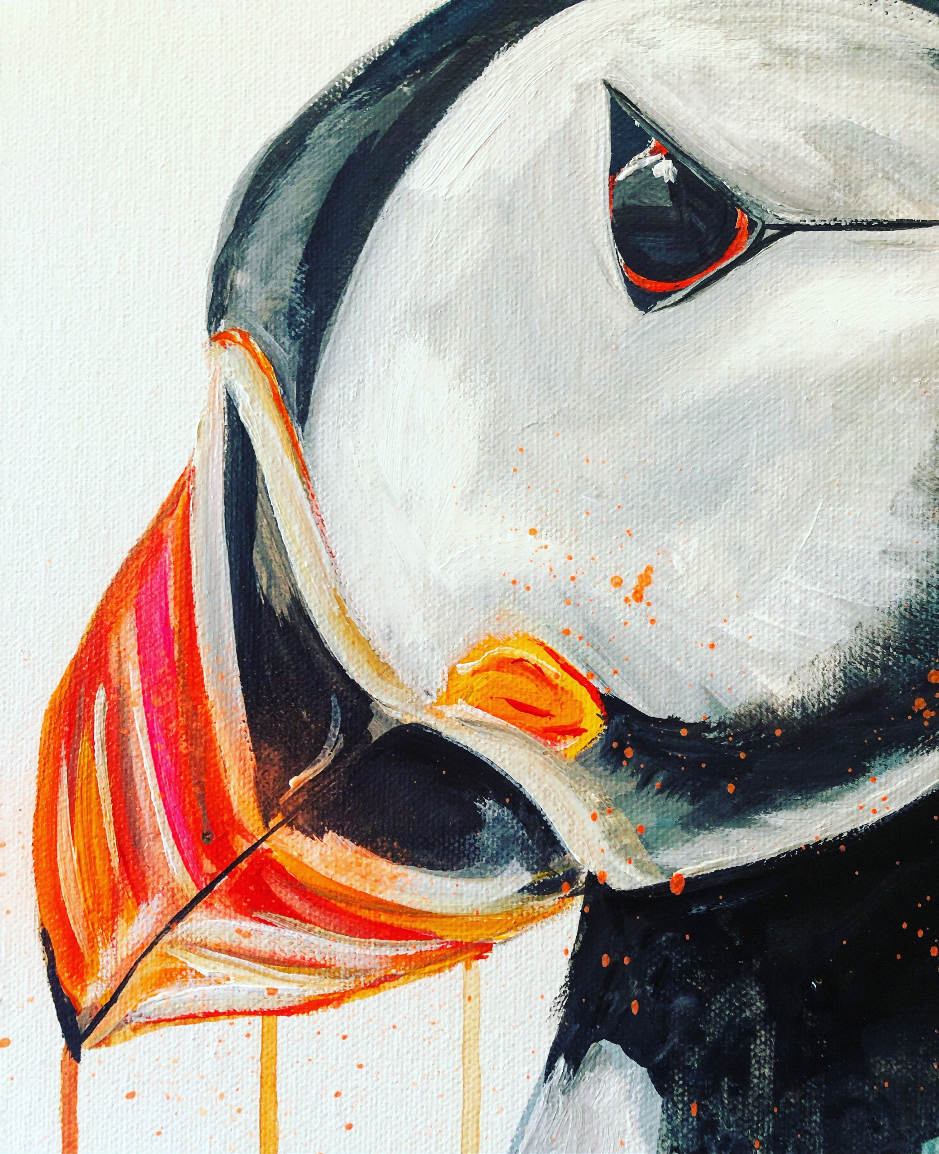 DAY45 #30minuteartchallenge PUFFIN
