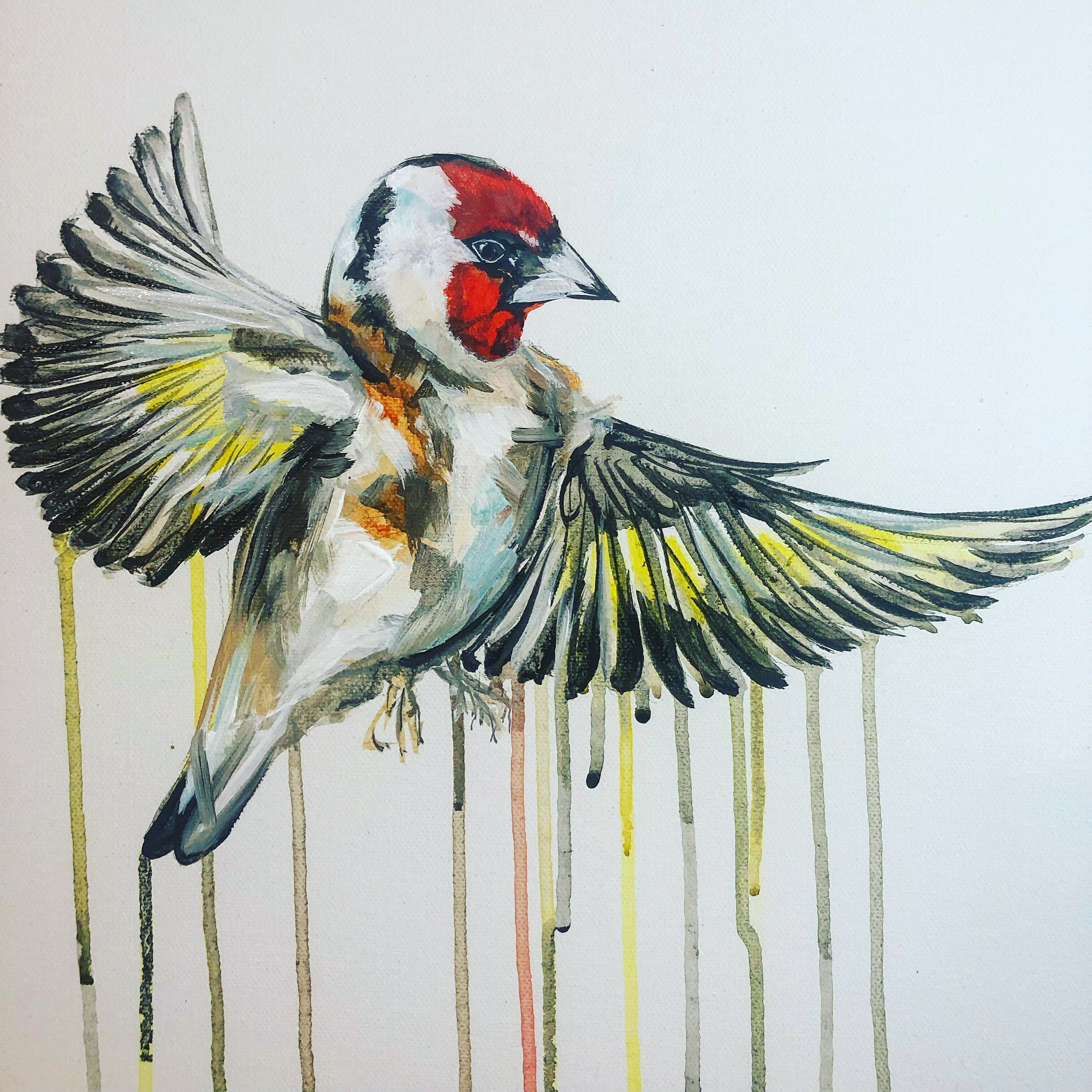 DAY47 #30minuteartchallenge GOLD FINCH
