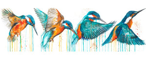 Limited Edition PRINT – IN FLIGHT (Kingfisher)