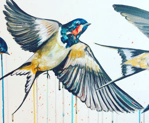 FLY HOME (Swallows)